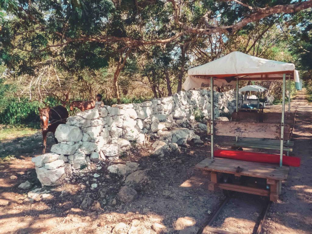 cenote-cuzama