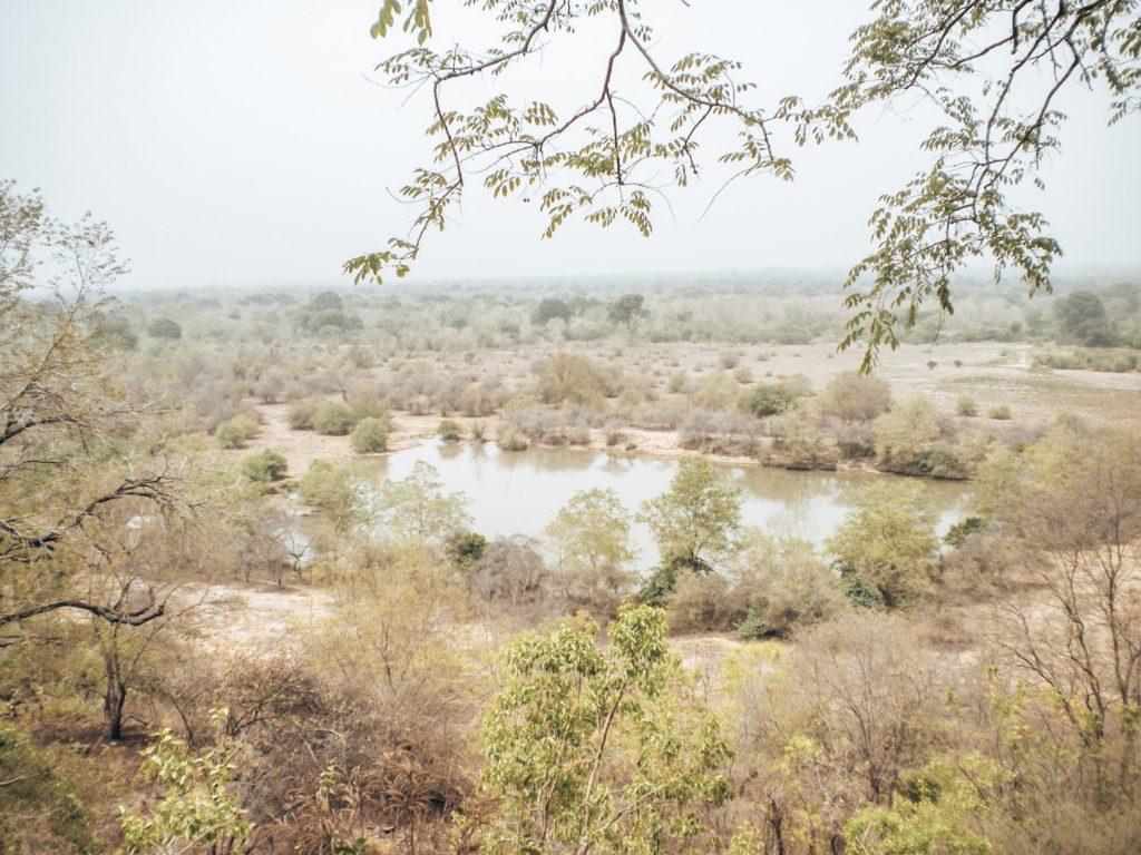 ghana-mole-nationalpark