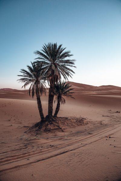 erg-chebbi-marokko